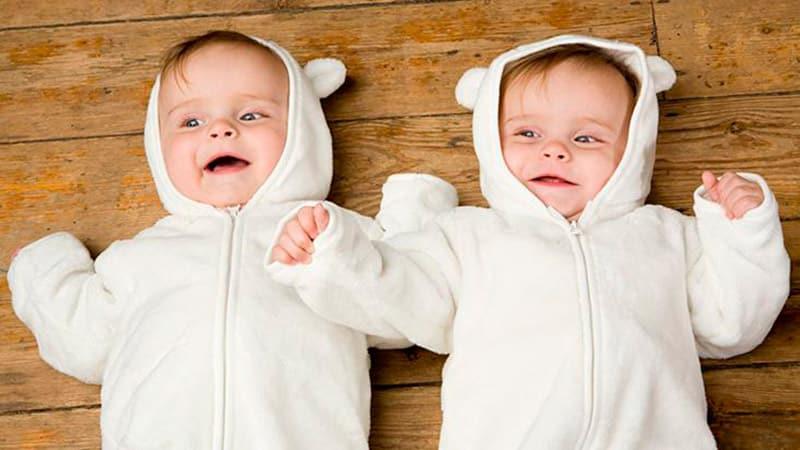 gêmeos idênticos